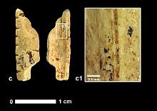 vogelherd - fragment elfenbeinflöte