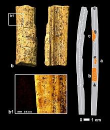 hohle fels - fragment elfenbeinflöte b und verortung