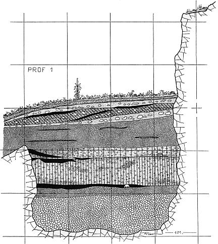 vogelherd - profil 1 - riek 1934