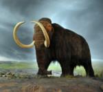 mammut - riese der eiszeit